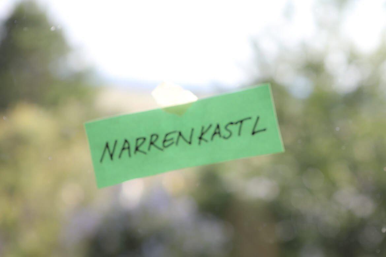 Gfrett, Gfrast, Gfries, Wiener Dialekt