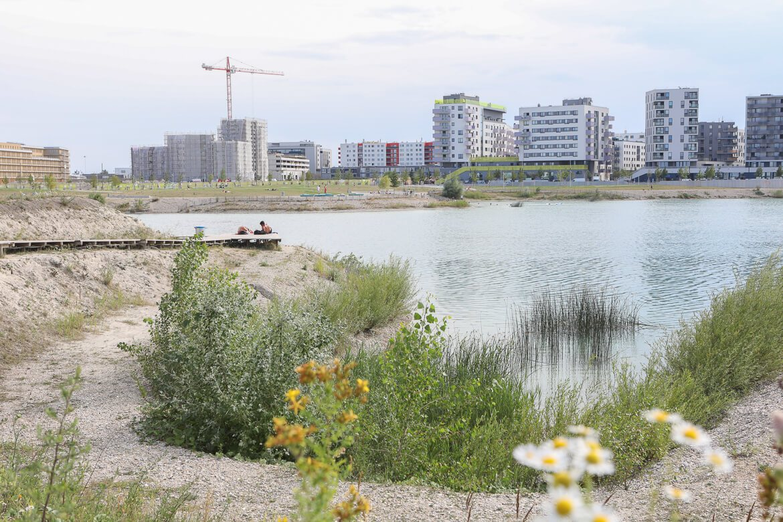 Seestadt Aspern, Badesee, Donaustadt