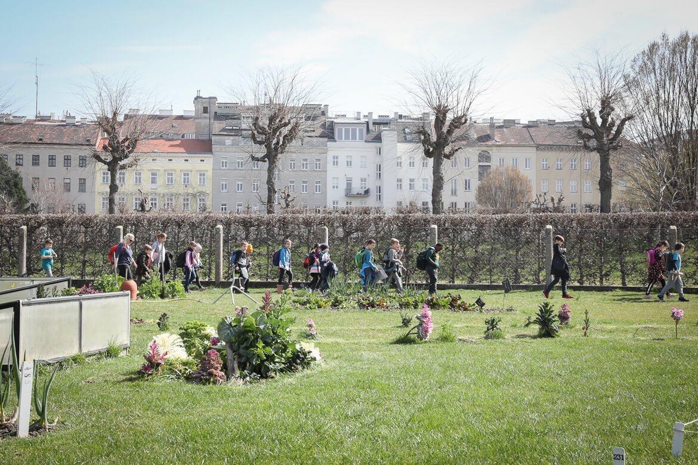 City Farm, urban gardening, madamewien.at, kinder und garten